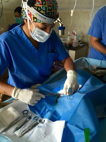 dr-asha
